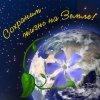 Празднование Всемирного дня охраны окружающей среды в Рязанском районе